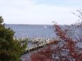 View od Dock