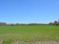 Crop-Land